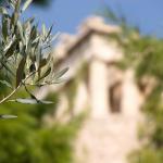 Μυρωδιές της Φθινοπωρινής Αθήνας